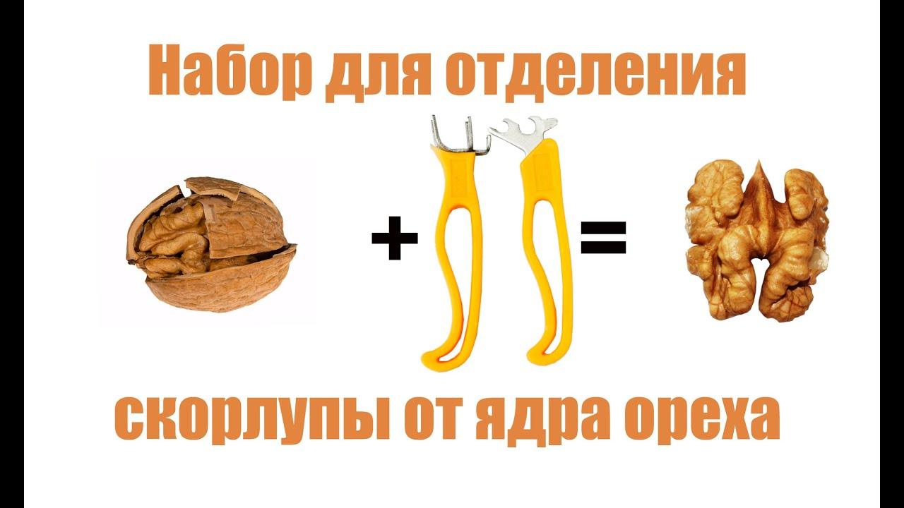 Масло грецкого ореха monini 250 мл (8005510007237) – купить на ➦ rozetka. Ua. ☎: (044) 537-02-22. Оперативная доставка ✈ гарантия качества ☑ лучшая цена $.