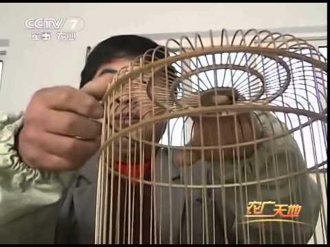 Cách làm lồng chim ( trung quốc)