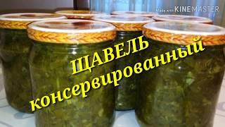 ЩАВЕЛЬ Консервированный🌱🌱🌱 / Заготовки / рецепты На глазок/