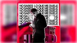 NO SABES LO QUE ME DUELE - RETRO *AUDIO*
