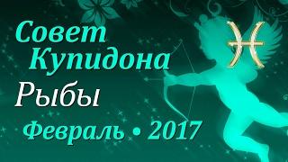 Рыбы, совет Купидона на февраль 2017. Любовный гороскоп.