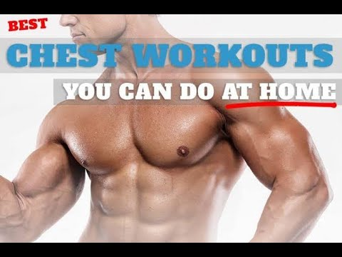 chest workout for beginners  no equipment  workout at