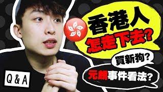 【波子Q&A🤔】香港人還可以怎走下去?元朗事件看法?🐶會買新狗嗎?(中字)