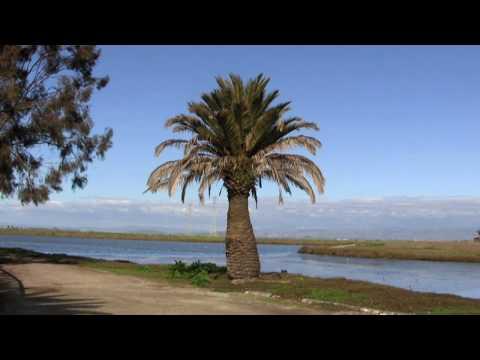 Palo Alto Baylands HD
