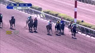 Vidéo de la course PMU PREMIO TORESANI