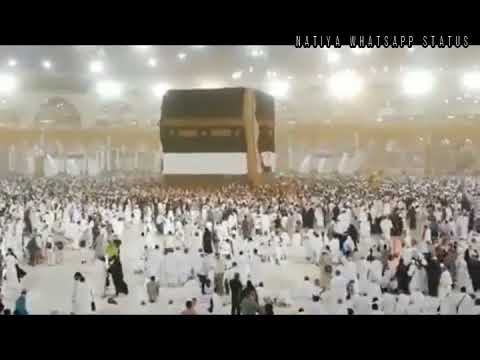 Ya Rabbe Mustafa Tu Mujhe Hajj Pe Bula | Hajj Special Status Whatsap Status