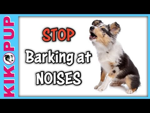 STOP Barking at Noises