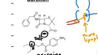 pharmacology animation