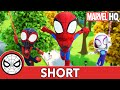 The Spidey Team | Marvel's Spidey and His Amazing Friends | @Disney Junior @Marvel HQ