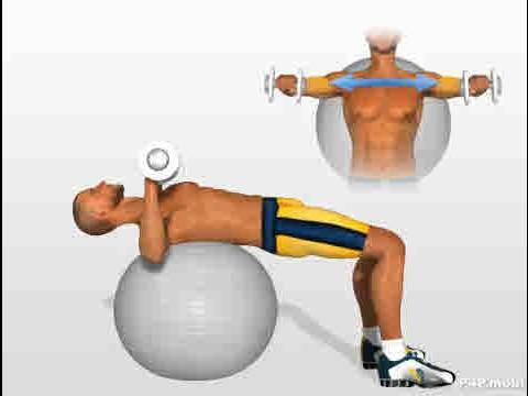 Chest Exercises Dumbbell Press On Swiss Ball Youtube