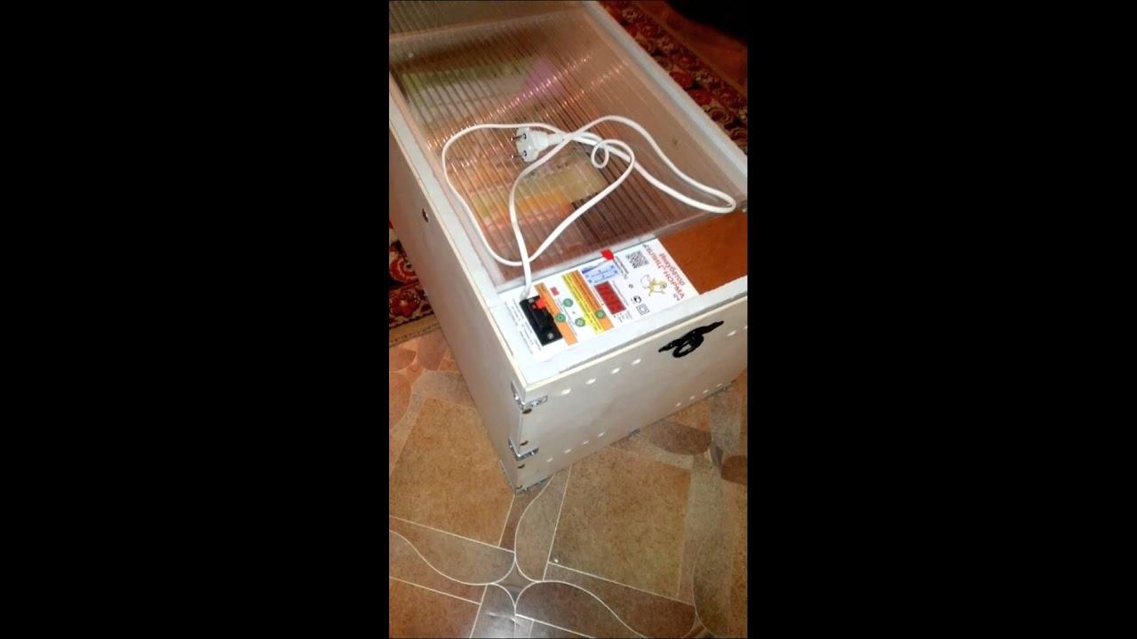 На блоке управления расположены терморегулятор, электронный цифровой термометр и механизм поворота решетки с яйцами. Внутри инкубатора находится вентилятор и нагревательный элемент. Инкубатор блиц-норма изготовлен по технологии блиц и отличается от остальных тем, что его корпус.
