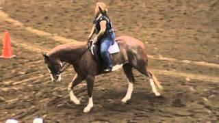 Class 4 Hunt Seat Equitation
