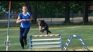 """Rally Obedience-Turnier"" erstmals in Chemnitz"