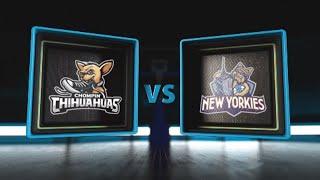 3BALL USA Showcase | Day 3: Semifinal #1 | Chompin' Chihuahuas vs  New Yorkies