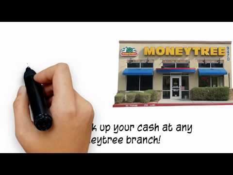 Loans - Moneytree Online Loans Are Simple