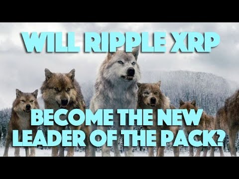 Will Ripple XRP Become The New Leader Of The Pack?