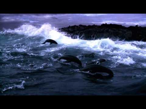 Deep Blue Ocean - Music by Valdi Sabev