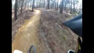 Swinley forest, new mtb red trail