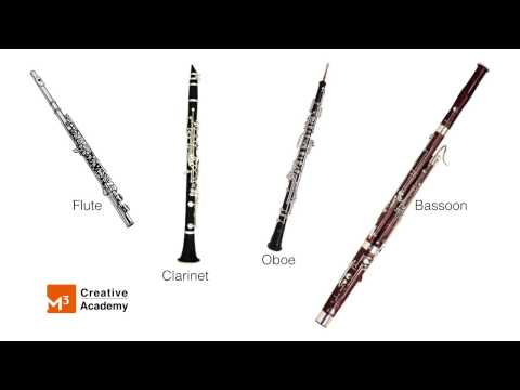 Music Appreciation Woodwinds - Peter And The Wolf