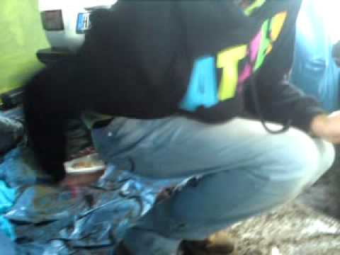 Lexow hat Blut im Stuhlgang!!!! - YouTube