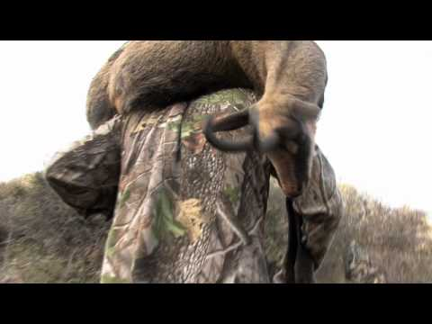 New Zealand Trophy Hunting | Stealth Films New Zealand