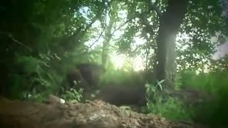 Война видео Украина Донбасс  2015 Бой возле Марьинки Июнь 2015