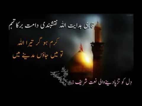 Naat (Qari Hidayatullah Naqshbandi DB)