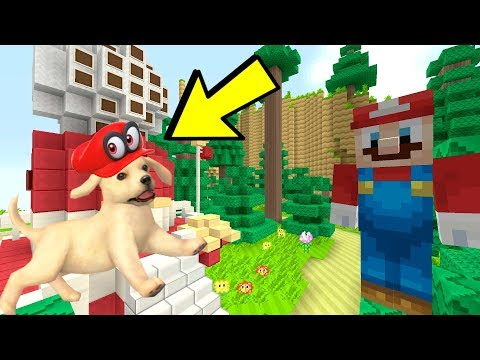 Minecraft Switch - Super Mario Series -  MARIO, DOGS, AND WOODED KINGDOM! [SO CUTE!] [236]
