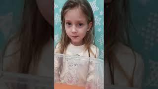 Куколка павлиноглазки Атлас Атакус   Познавательное видео для детей