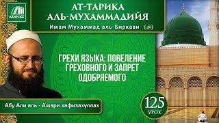 «Ат-Тарика аль-Мухаммадийя». Урок 125. Грехи языка: повеление греховного и запрет одобряемого