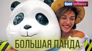 Орёл и Решка. Чудеса света | Большая панда