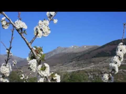 macetas de colores - el desván del duende - youtube