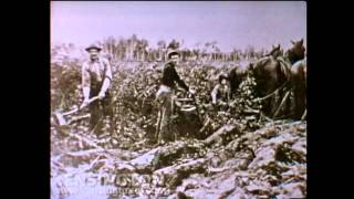 "Stan Rogers sings ""The Field Behind the Plow"""