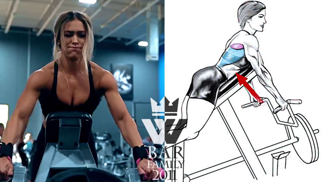 Total Body Workout For Women Fitness Gym Exercise Youtube The owners, staff and classes here are fantastic. total body workout for women fitness gym exercise