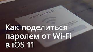 Как поделиться паролем от Wi-Fi в iOS 11