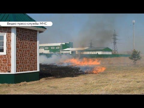 400 возгораний произошло на территории Алтайского края за праздники