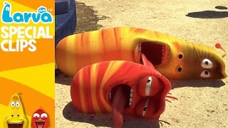 [Official] Summer - Fun Clips from Animation LARVA