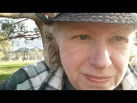 Why is the Australian Government Silent about Australian citizen Julian Assange? #FreeAssange