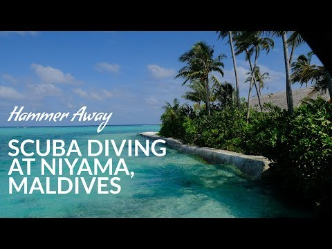 Scuba Diving at Niyama Private Islands in Maldives