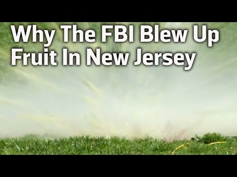 FBI Blows Up Fruit In New Jersey