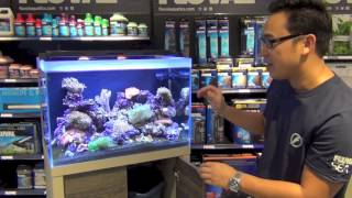 FLUVAL Reef Aquariums