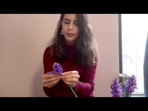 How to make a paper sonbol (Hyacinth) by Behin joon!