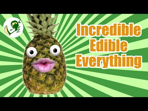 Incredible Edible Everything: The Tale Of Two Gardens - Green Ninja Show