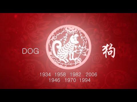 Year of the Dog: 2016 Chinese Horoscope