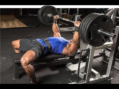 what-muscles-are-used-in-bench-press