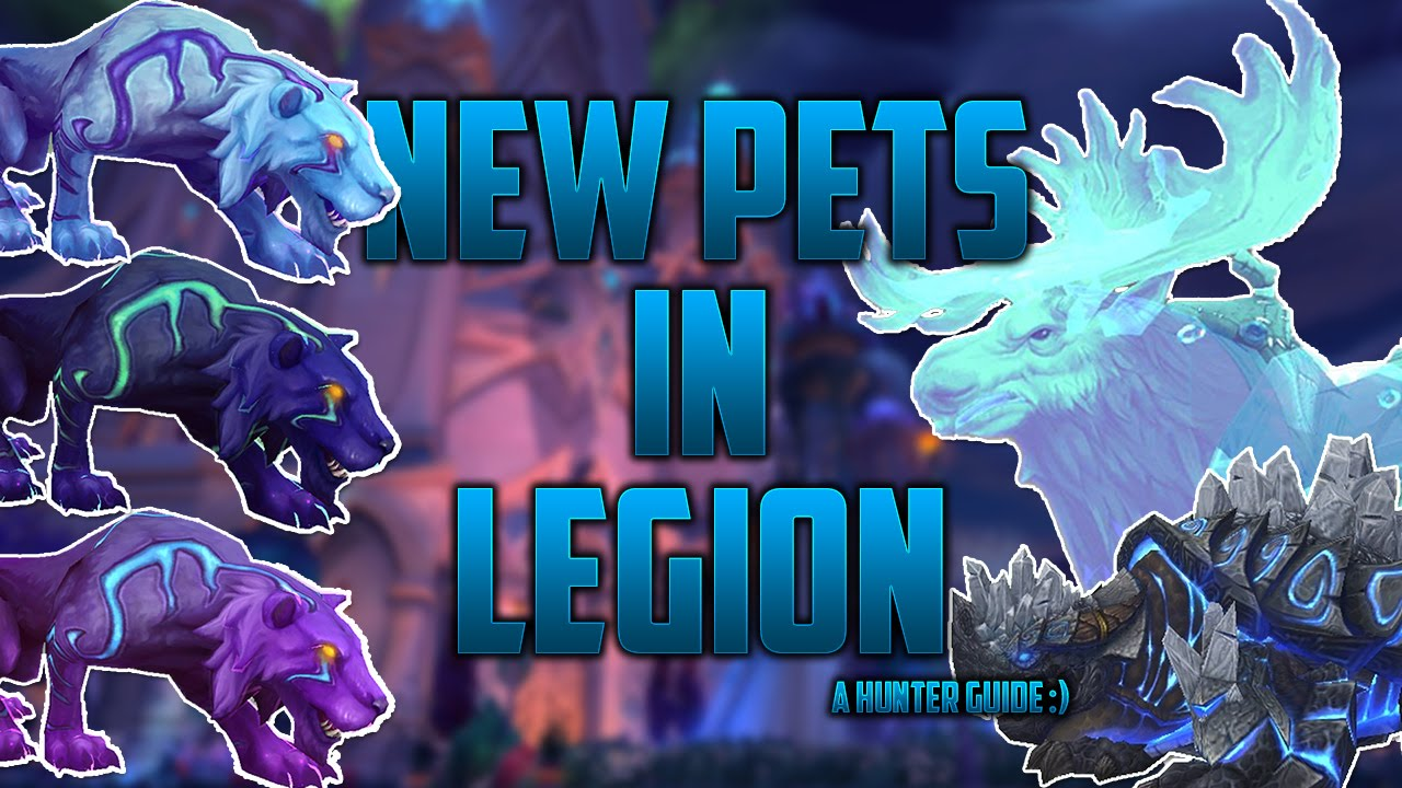 New Hunter Pets Legion Youtube