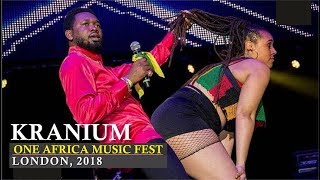 Kranium crazy performance | One Africa Music Fest, London 2018