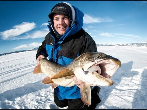 Lake trout ice fishing monster 41 lake trout on jigging for Lake trout fishing lures