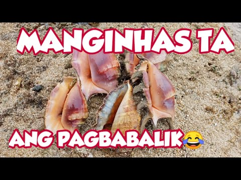 Shellfish Gathering, Coastal Foraging | Manginhas Ta Utro