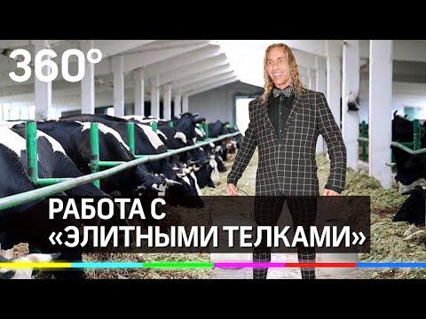Фермер Сирота пригласил Тарзана к «элитным телкам»